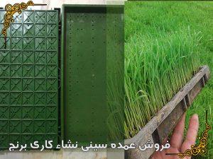 فروش عمده سینی (سبد)نشاء کاری برنج